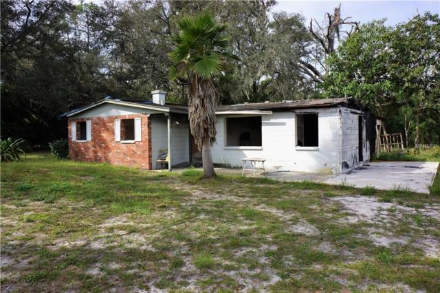 8514 Tom Costine Road, Lakeland, FL 33809 (MLS #L4904464) :: Premium Properties Real Estate Services