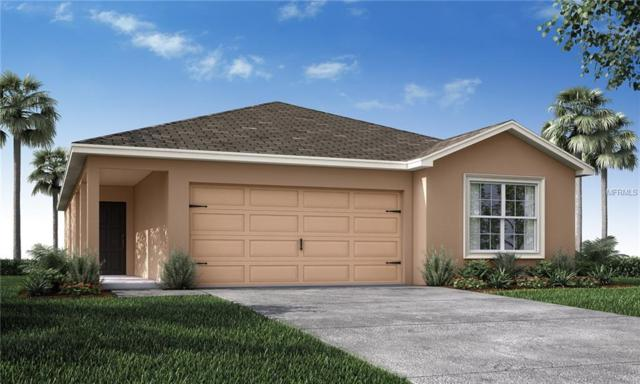 4591 Calumet Drive, Saint Cloud, FL 34772 (MLS #L4904658) :: Premium Properties Real Estate Services