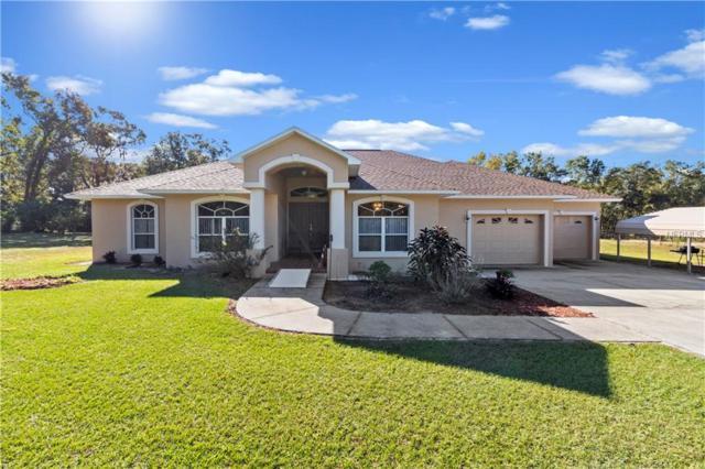 3325 Nichols Road, Lithia, FL 33547 (MLS #L4904938) :: Dalton Wade Real Estate Group