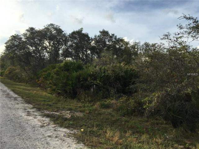 2980 W Albatross Road, Avon Park, FL 33825 (MLS #L4904977) :: The Duncan Duo Team