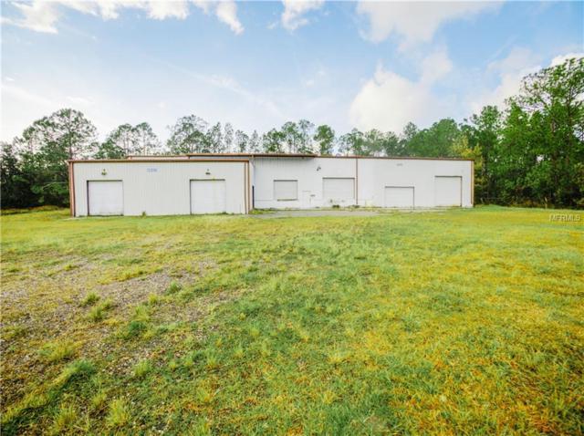 13330 Rockridge Road, Lakeland, FL 33809 (MLS #L4904982) :: Mark and Joni Coulter | Better Homes and Gardens