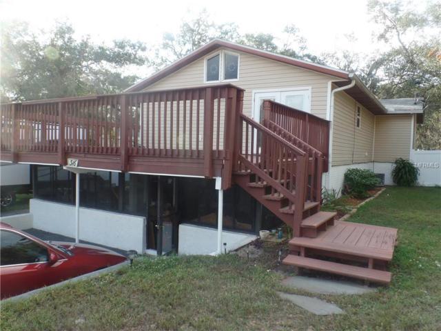 316 Callitris Avenue, Polk City, FL 33868 (MLS #L4904993) :: Welcome Home Florida Team