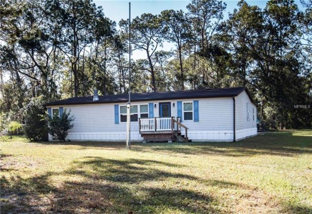 10905 Trails End, Lakeland, FL 33809 (MLS #L4905009) :: Gate Arty & the Group - Keller Williams Realty