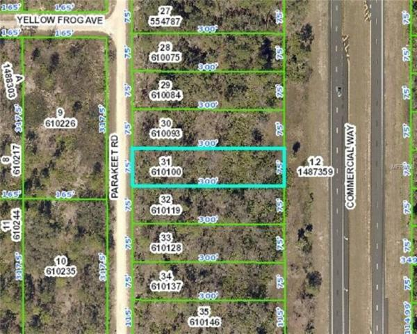 18316 Parakeet Road, Weeki Wachee, FL 34614 (MLS #L4905314) :: RE/MAX Realtec Group