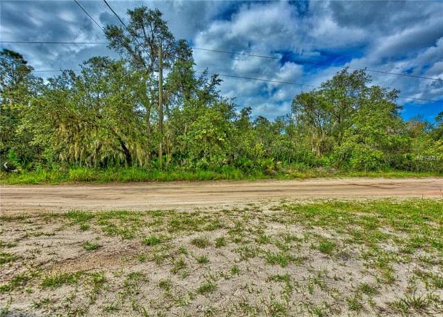 Fazzini Drive, Frostproof, FL 33843 (MLS #L4905324) :: The Duncan Duo Team