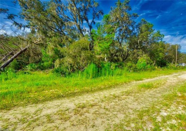 Garcia Lane, Frostproof, FL 33843 (MLS #L4905327) :: The Duncan Duo Team