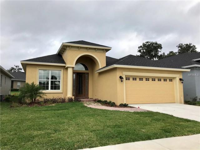 1039 Stoney Creek Place, Lakeland, FL 33811 (MLS #L4905857) :: The Light Team