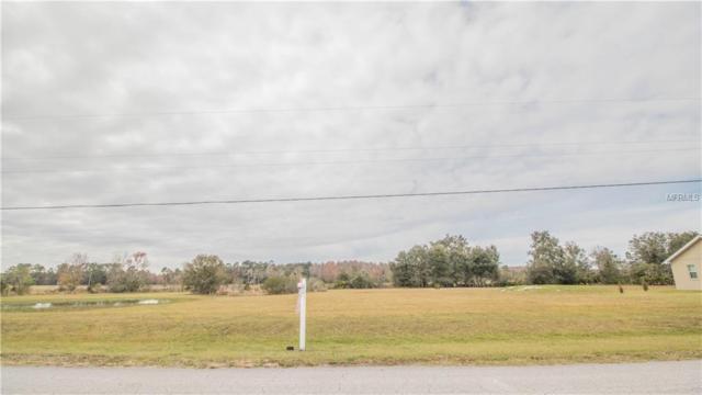 14514 Evans Ranch Road, Lakeland, FL 33809 (MLS #L4905918) :: The Duncan Duo Team