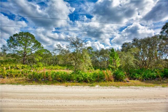 2911 Sand Pine Trail, Frostproof, FL 33843 (MLS #L4906138) :: Griffin Group