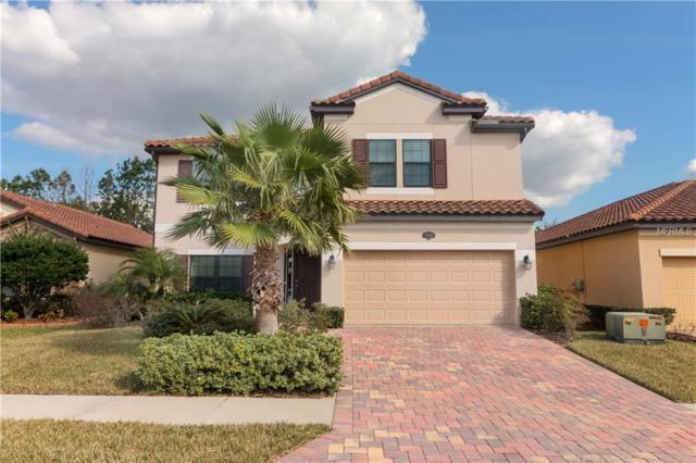 3969 Viamonte Lane, Lakeland, FL 33810 (MLS #L4906168) :: NewHomePrograms.com LLC