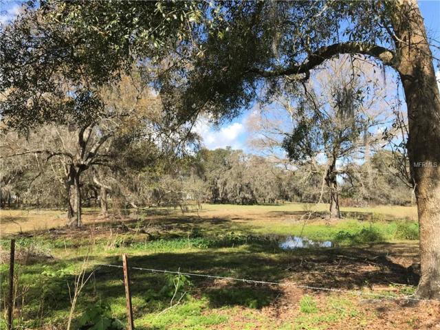 411 W Socrum Loop Road, Lakeland, FL 33809 (MLS #L4906278) :: Florida Real Estate Sellers at Keller Williams Realty