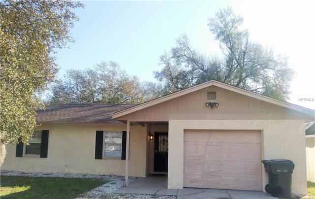 6217 Doe Circle W, Lakeland, FL 33809 (MLS #L4906301) :: Florida Real Estate Sellers at Keller Williams Realty