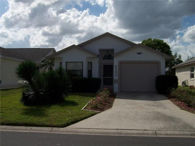 6230 Raven Run, Lakeland, FL 33809 (MLS #L4906421) :: Gate Arty & the Group - Keller Williams Realty