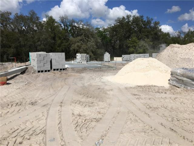 125 Heritage Park Lane, Mulberry, FL 33860 (MLS #L4906686) :: Team Bohannon Keller Williams, Tampa Properties