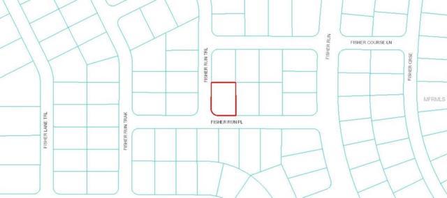 Fisher Run Place, Ocklawaha, FL 32179 (MLS #L4906756) :: Team Bohannon Keller Williams, Tampa Properties