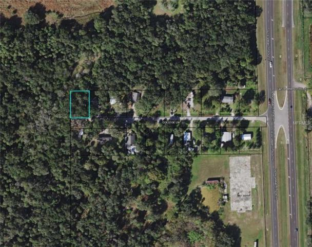 188 College Lane, Zolfo Springs, FL 33890 (MLS #L4906904) :: Burwell Real Estate