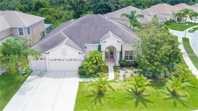 2844 Ponce Court, Holiday, FL 34691 (MLS #L4907050) :: Jeff Borham & Associates at Keller Williams Realty