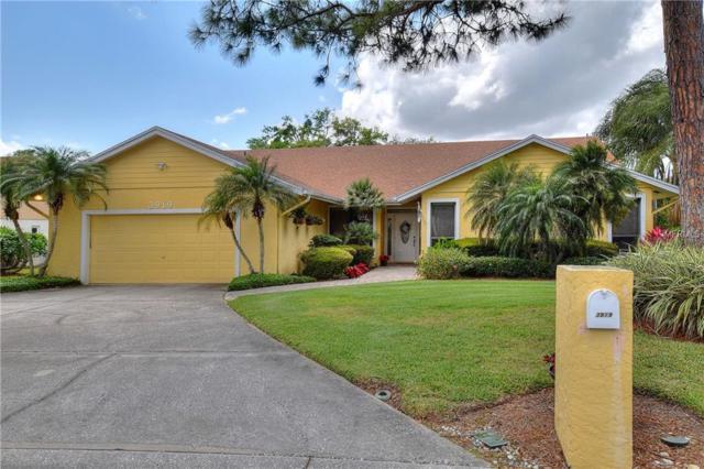 3919 Cheverly Drive E, Lakeland, FL 33813 (MLS #L4907263) :: RE/MAX Realtec Group