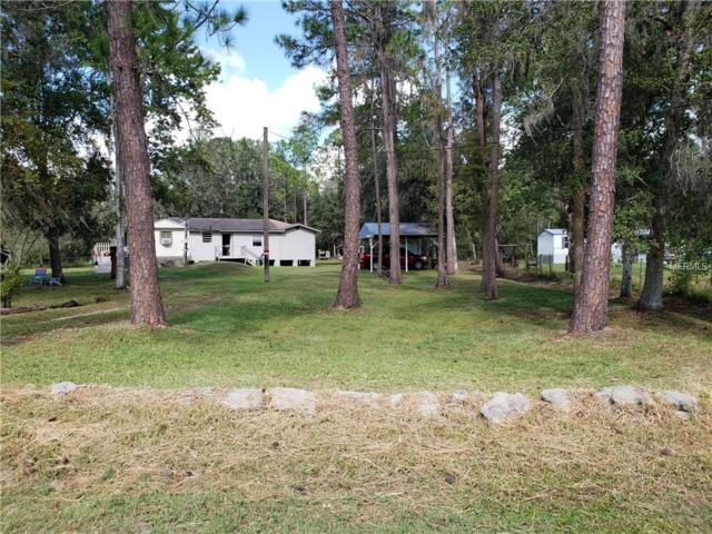1711 Creekwood Run, Lakeland, FL 33809 (MLS #L4907449) :: Ideal Florida Real Estate