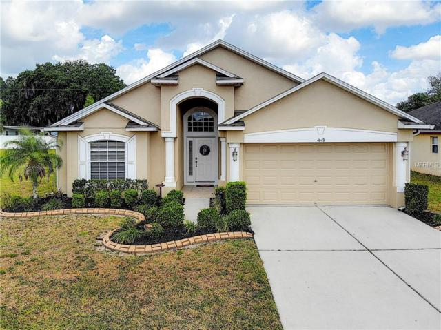 4643 Hickory Stream Lane, Mulberry, FL 33860 (MLS #L4907471) :: Welcome Home Florida Team
