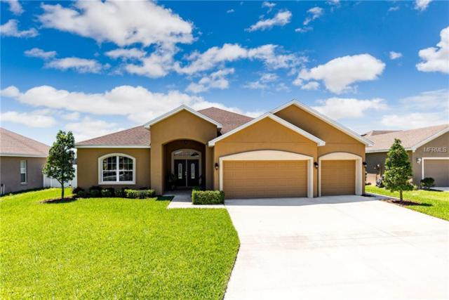 6864 Bushnell Drive, Lakeland, FL 33813 (MLS #L4907576) :: NewHomePrograms.com LLC