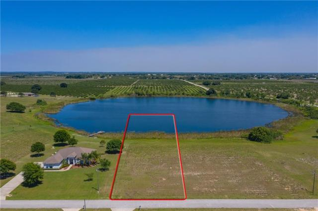 7206 Lake Enderly Boulevard, Bartow, FL 33830 (MLS #L4907617) :: Welcome Home Florida Team