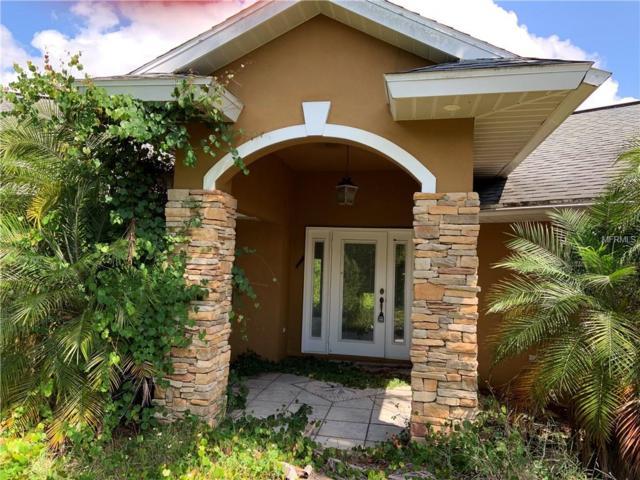 4400 Skipper Road, Sebring, FL 33875 (MLS #L4907940) :: Team Bohannon Keller Williams, Tampa Properties