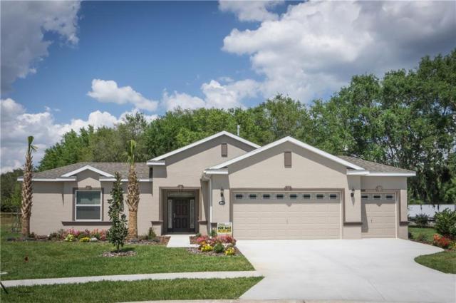 27008 Camerons Run, Leesburg, FL 34748 (MLS #L4908331) :: Team Bohannon Keller Williams, Tampa Properties