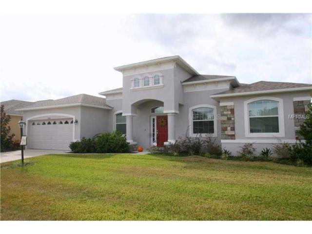 6526 Evergreen Park Drive, Lakeland, FL 33813 (MLS #L4908378) :: The Duncan Duo Team