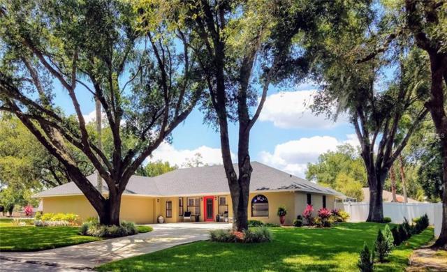 918 Hammock Shade Drive, Lakeland, FL 33809 (MLS #L4908431) :: KELLER WILLIAMS ELITE PARTNERS IV REALTY
