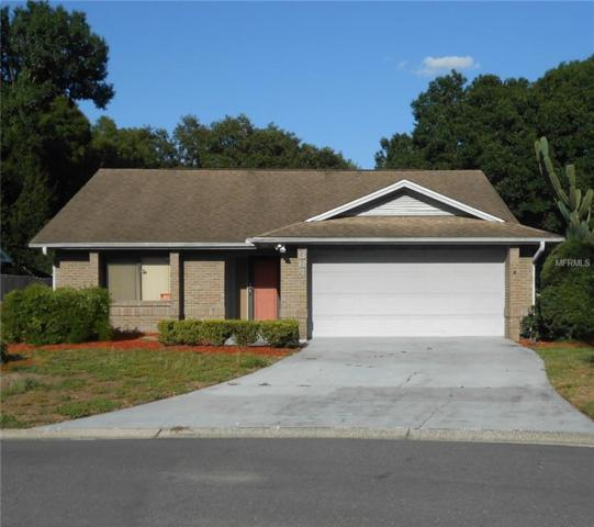 364 N Fork Place, Lakeland, FL 33809 (MLS #L4908439) :: Mark and Joni Coulter | Better Homes and Gardens