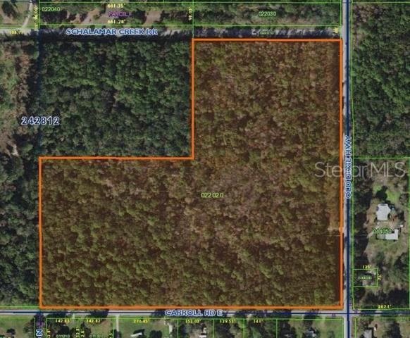 Old Dixie Highway, Lakeland, FL 33801 (MLS #L4908519) :: The Duncan Duo Team