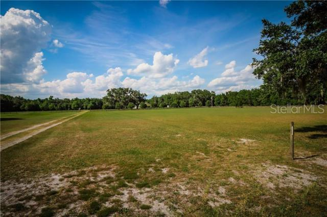 Wells Road, Mulberry, FL 33860 (MLS #L4908671) :: Gate Arty & the Group - Keller Williams Realty