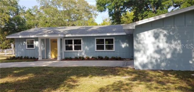 4910 Deter Road, Lakeland, FL 33813 (MLS #L4908708) :: Bridge Realty Group