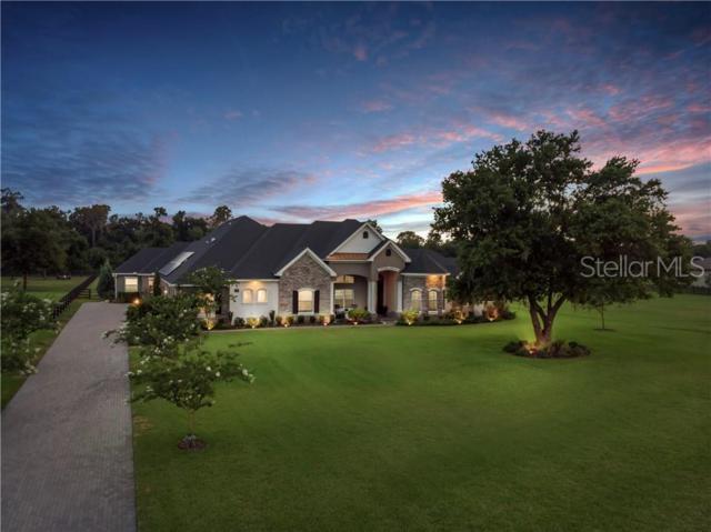 7009 Indian Creek Park Drive, Lakeland, FL 33813 (MLS #L4908734) :: Bridge Realty Group