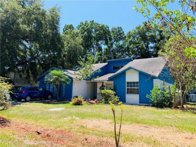 132 W Daughtery Road, Lakeland, FL 33809 (MLS #L4908781) :: The Duncan Duo Team
