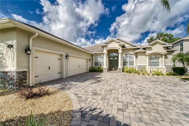 4491 Micanope Crescent Drive, Lakeland, FL 33811 (MLS #L4908806) :: White Sands Realty Group