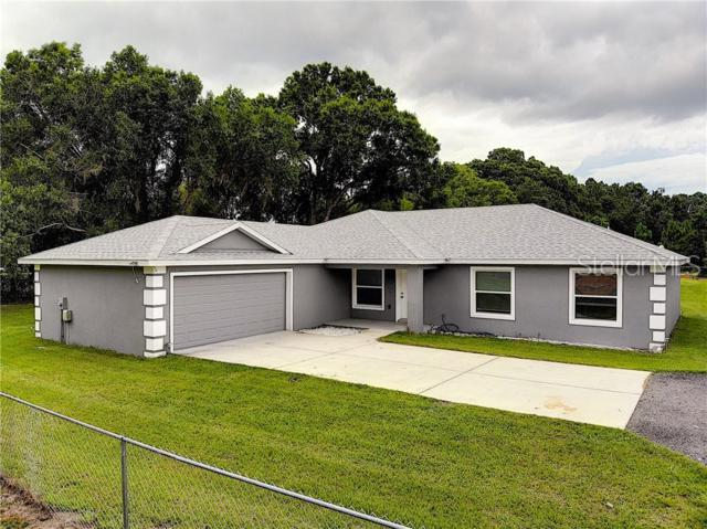 8200 Tom Gilbert Road, Lakeland, FL 33810 (MLS #L4908899) :: The Duncan Duo Team