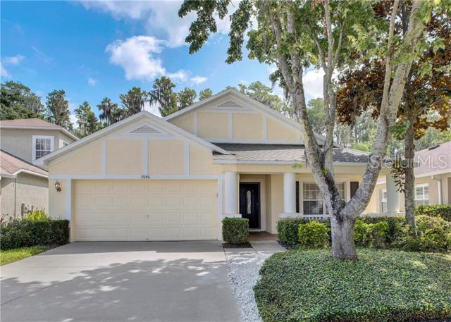 7646 Citrus Blossom Drive, Land O Lakes, FL 34637 (MLS #L4909014) :: Griffin Group