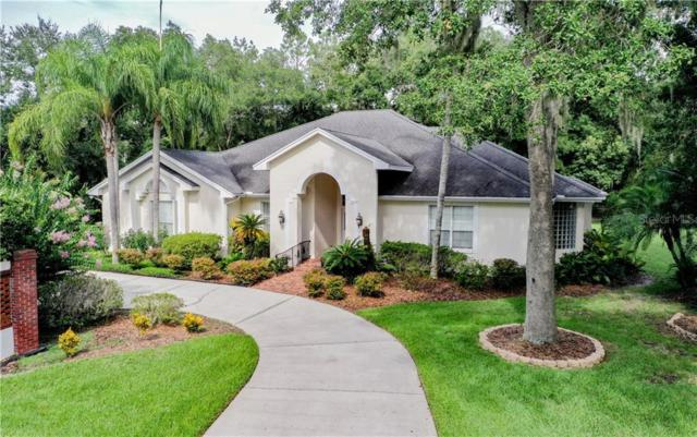 7205 Millbrook Oaks Drive, Lakeland, FL 33813 (MLS #L4909174) :: Team 54