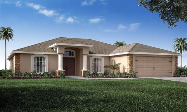 6400 SW 117TH STREET Road, Ocala, FL 34476 (MLS #L4909427) :: Team Bohannon Keller Williams, Tampa Properties