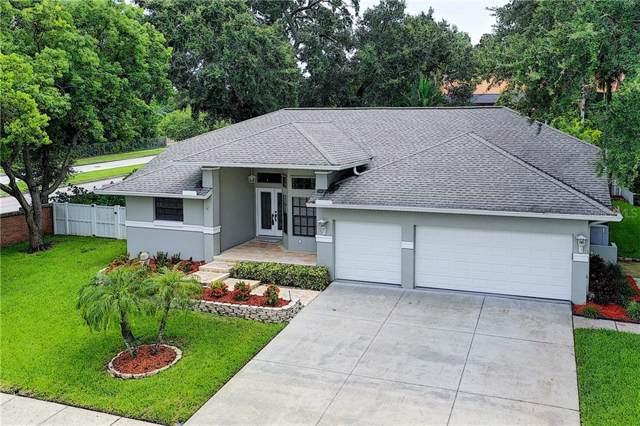 605 Tomoka Drive, Palm Harbor, FL 34683 (MLS #L4909466) :: The Nathan Bangs Group