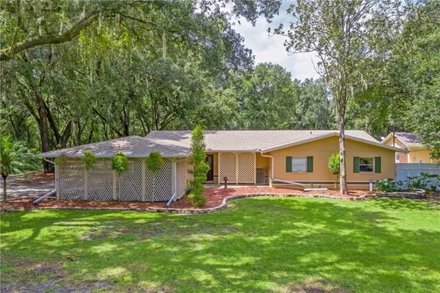4445 Spring Lane, Lakeland, FL 33811 (MLS #L4909663) :: Lovitch Realty Group, LLC
