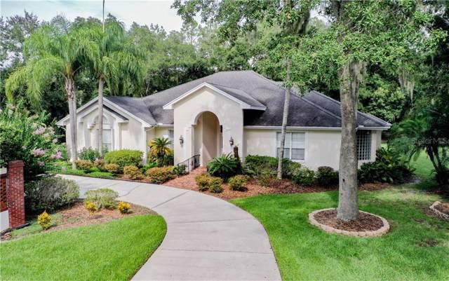 7205 Millbrook Oaks Drive, Lakeland, FL 33813 (MLS #L4909942) :: Team Bohannon Keller Williams, Tampa Properties