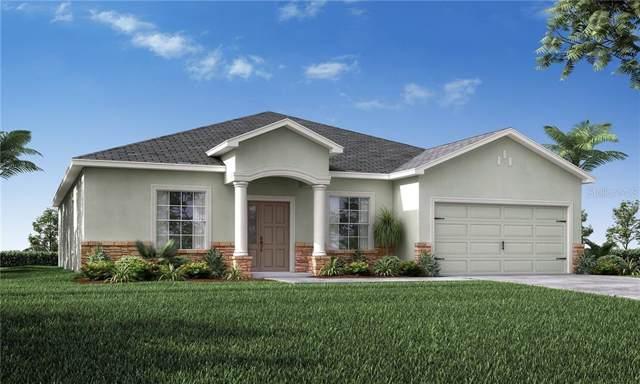 4168 Shearwater Street, Lakeland, FL 33811 (MLS #L4909997) :: Cartwright Realty