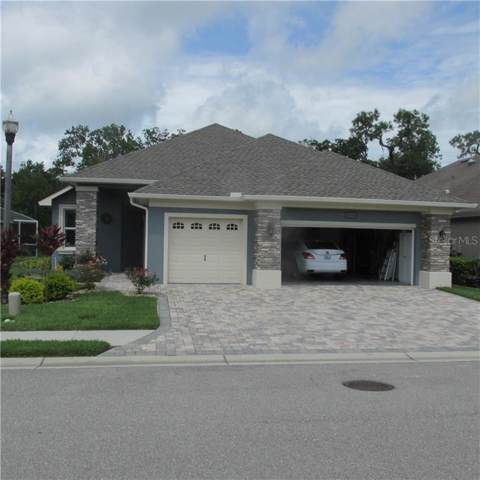 8256 Lake James Drive, Lakeland, FL 33810 (MLS #L4910024) :: RE/MAX Realtec Group