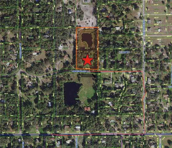 4241 Homewood Lane, Lakeland, FL 33811 (MLS #L4910097) :: White Sands Realty Group