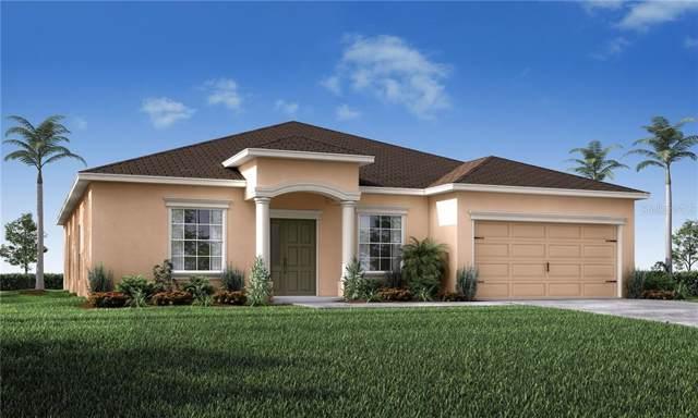 6621 Castle Green Place, Zephyrhills, FL 33541 (MLS #L4910202) :: Team 54