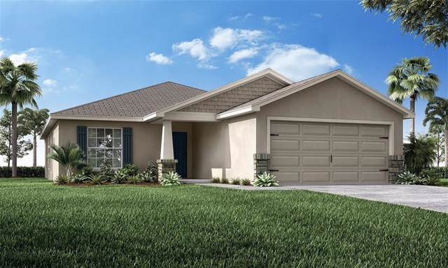 3906 White Ibis Road, Lakeland, FL 33811 (MLS #L4910634) :: Premium Properties Real Estate Services