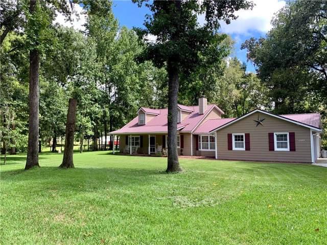 12677 SE 53RD TERRACE Road, Belleview, FL 34420 (MLS #L4910884) :: Premier Home Experts